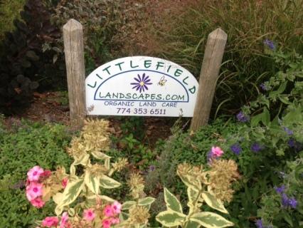 littlefieldlandscapes