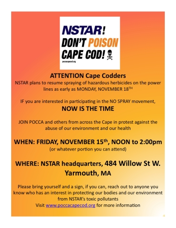 NSTAR Draft Flyer 2[1]